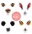 cute animal faces icon set vector image vector image