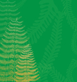Floral Background with Fern Fronds vector image vector image