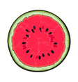 half of ripe watermelon top view sketch style vector image vector image