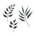 hand drawn tree plant flower branches vector image