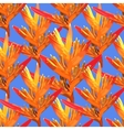 Heliconia colorful seamless flower on a blue