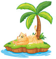 lazy cat on the isolated island vector image vector image