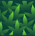 marijuana leaves seamless pattern bright green vector image