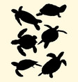 turtles animal silhouette vector image