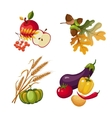 Vegetables and Fruits Stalks Autumn Leaves vector image vector image