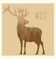double exposition deer with forest panorama - wild vector image