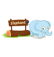 Cartoon zoo elephant sign vector image vector image
