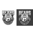 football team angry bear mascot emblem vector image vector image