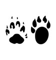 marten footprint vector image vector image