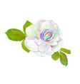 multi colored rose simple stem with leaves vector image vector image