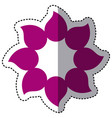 purple flower with pointed petals icon vector image vector image