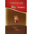 strawberry chocolate design vector image vector image