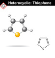 Thiophene five-membered heterocyclic ring vector image vector image