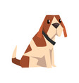 beagle dog cute animal cartoon character vector image vector image