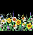 border with daffodils and wild flowers vector image vector image