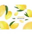 falling mangoes fruit isolated on white background vector image vector image