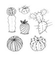 set of cactus hand drawn botanical art vector image vector image