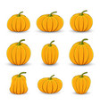 set pumpkins in different sizes and shapes on a vector image vector image