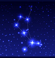 the constellation of the bootes in the night vector image vector image