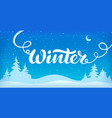 winter handwritten vector image vector image