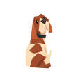 beagle dog sitting and looking back cute funny vector image vector image