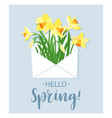hello spring yellow daffodils in white envelope vector image vector image