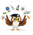 knowledge owl vector image vector image