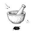 mortar and pestle drawing engraving style vector image