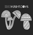 ornate mushrooms black and white for vector image