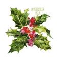 Watercolor cranberries vector image