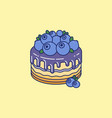cake blueberries chocolate syrup