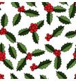 christmas mistletoe plant vector image
