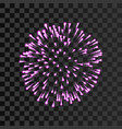 firework pink sparkle isolated transparent vector image vector image