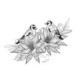 Hand drawn goldfinches sitting on lily flower