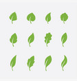 leaf icons set on white background vector image