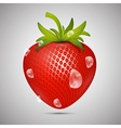 Red Strawberry with Water drops on Grey Background vector image
