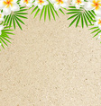 Sand Background With Frangipani vector image