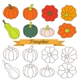 Set of pumpkin vegetable clip art vector image vector image