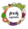 types of fresh vegetables in the circle vector image vector image