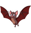 cartoon bat fly isolated on white background vector image