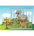 Cartoon Zoo Emu vector image vector image