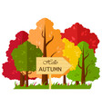 isolated with autumn forest vector image vector image