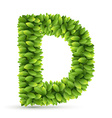 Letter D alphabet of green leaves vector image vector image