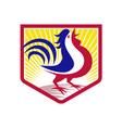 rooster cockerel crowing crest vector image vector image