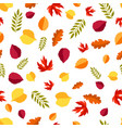 seamless floral pattern with stylized autumn vector image vector image