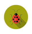 Red Lady Bug flat icon vector image