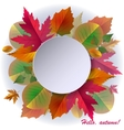 Autumn background with frame and leaves vector image vector image
