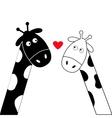 Cute cartoon black white giraffe boy and girl vector image vector image