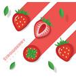 fresh strawberry fruit background paper art style vector image