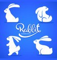 rabbit collection silhouette small cute vector image vector image